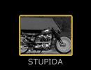 STUPIDA