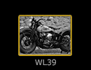 WL 39